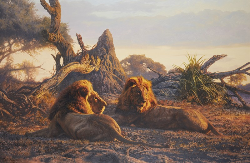 Paul Augustinus , Lions, Evening