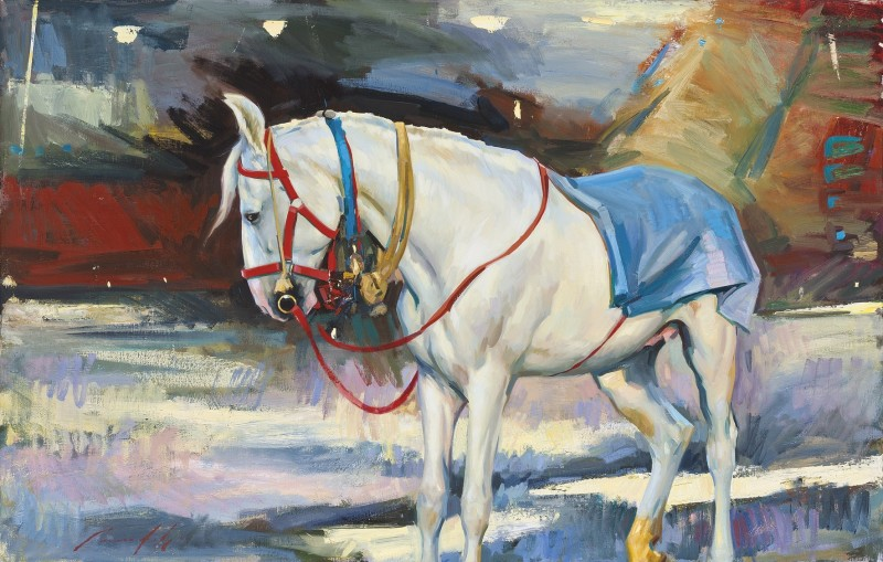 Marcus Hodge , Grey at Pushkar Camel Fair