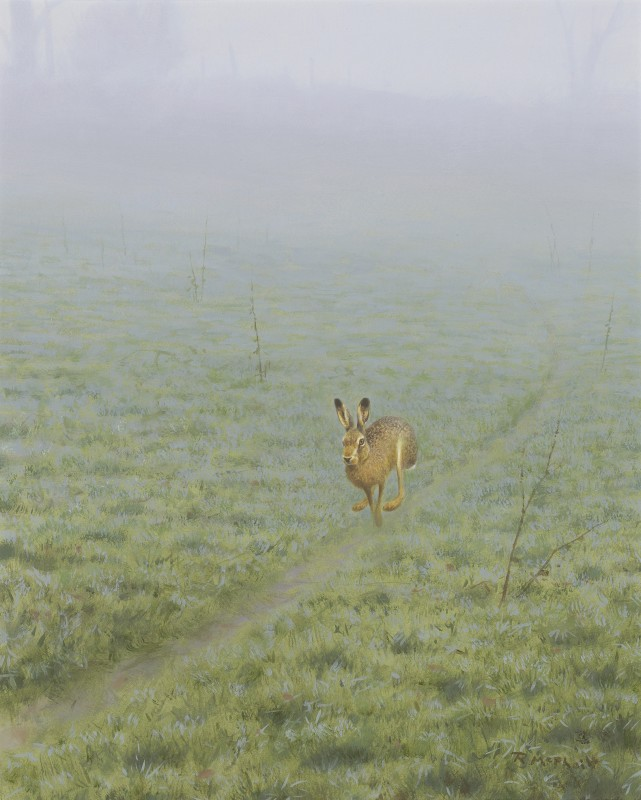 Rodger McPhail , Hare on track