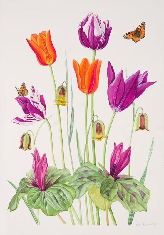 Ann Fraser , Bright Spring