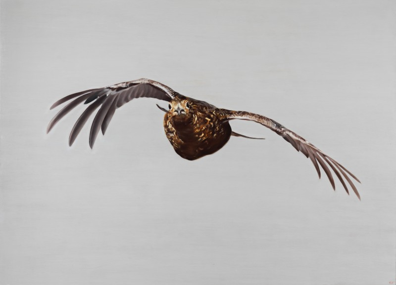 Anna Clare Lees-Buckley , Incoming Grouse