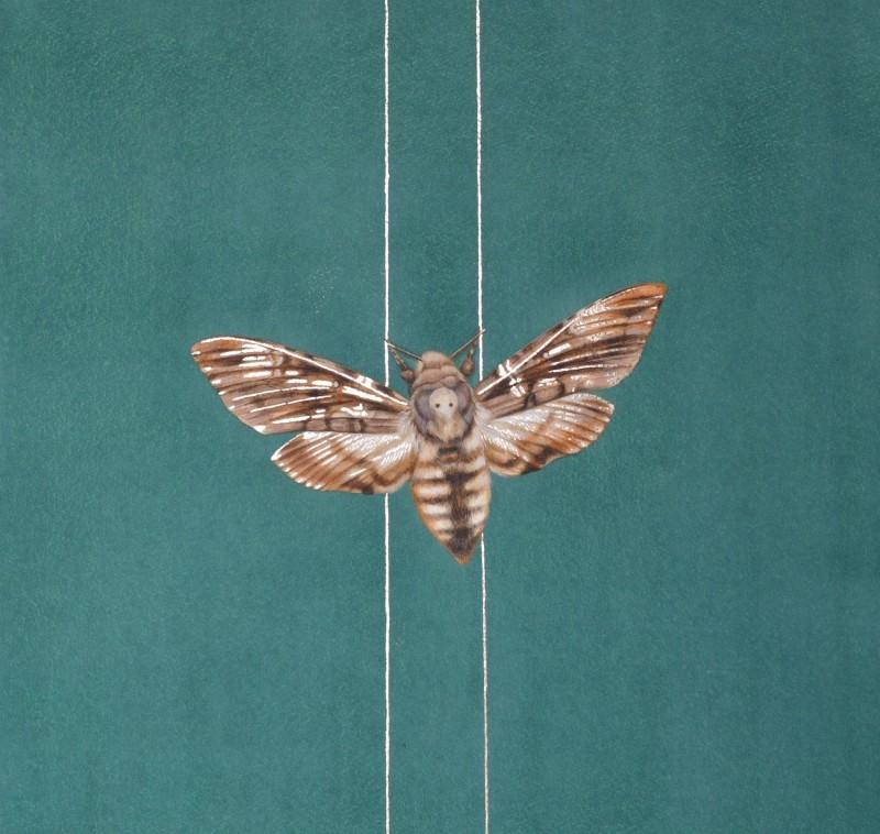 Moth on golden thread