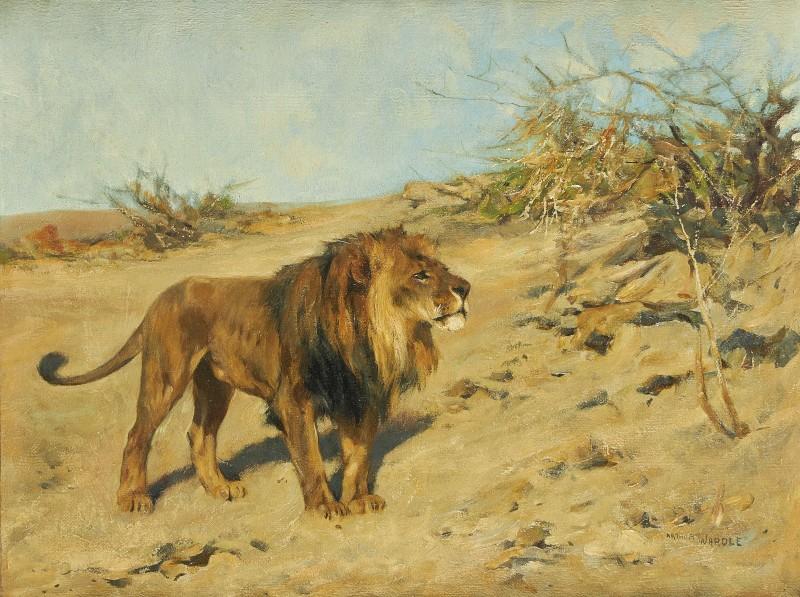 Arthur Wardle , R.I., R.B.C. , Lion