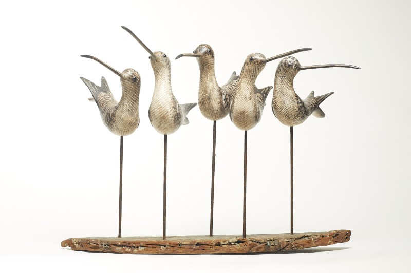 Five Shorebirds on Driftwood