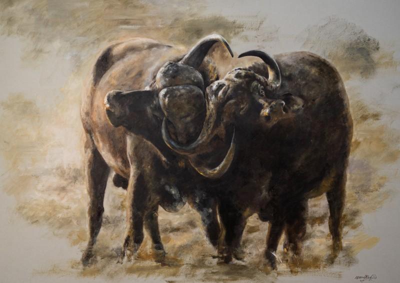 Buffalo Battle