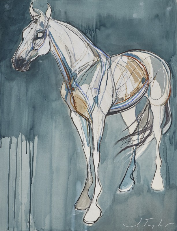Jo Taylor , The silver horse