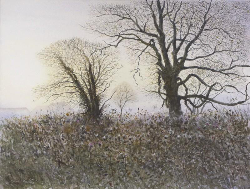 Dead of winter, North Marden