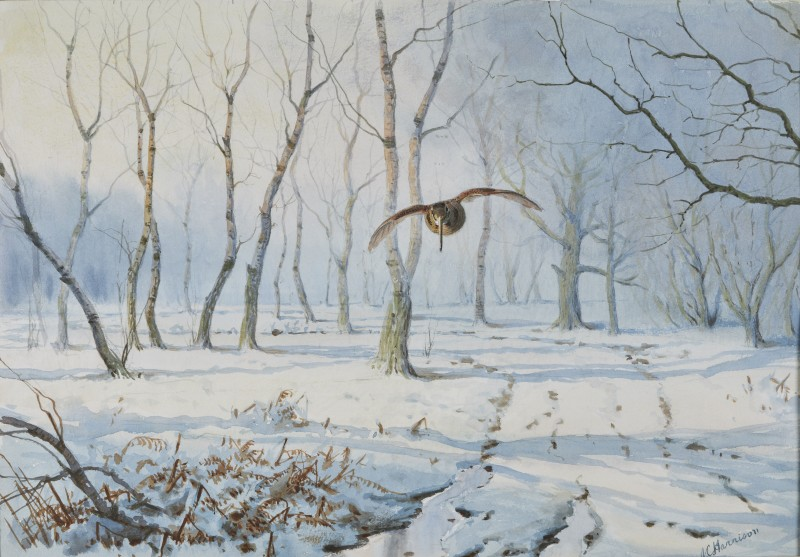 John Cyril Harrison , Woodcock over the snow