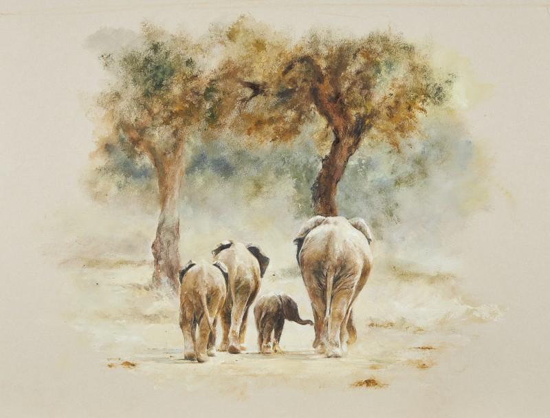 Nsefu, Elephant family