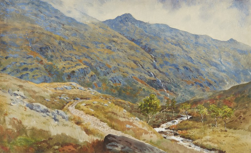 Archibald Thorburn , View of Barrisdale Forest