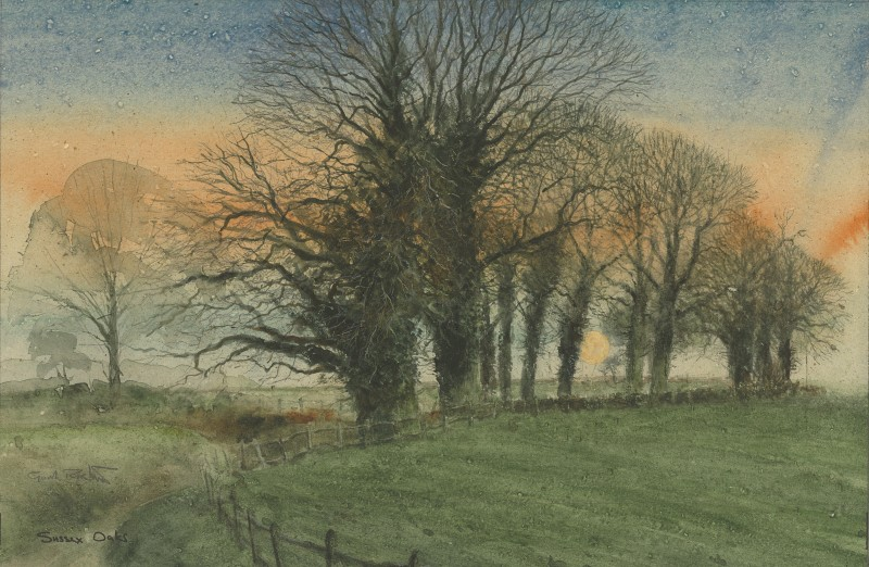 Gordon Rushmer , Sussex Oaks, Graffham