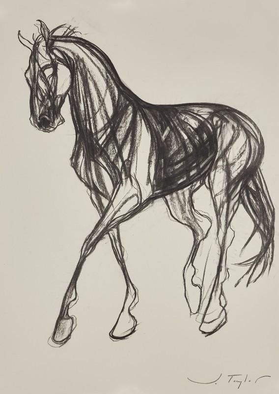 Jo Taylor , Joyous Horse II