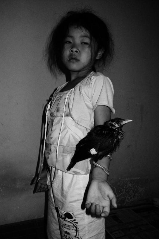 冯立《黑鸟、女孩》 Feng Li Blackbird, Girl 2007