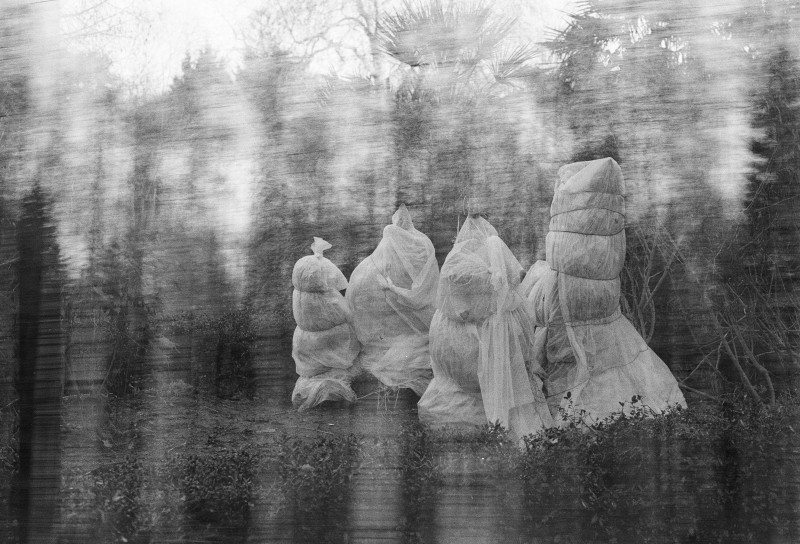 《静谧之地》系列,摄影,2019