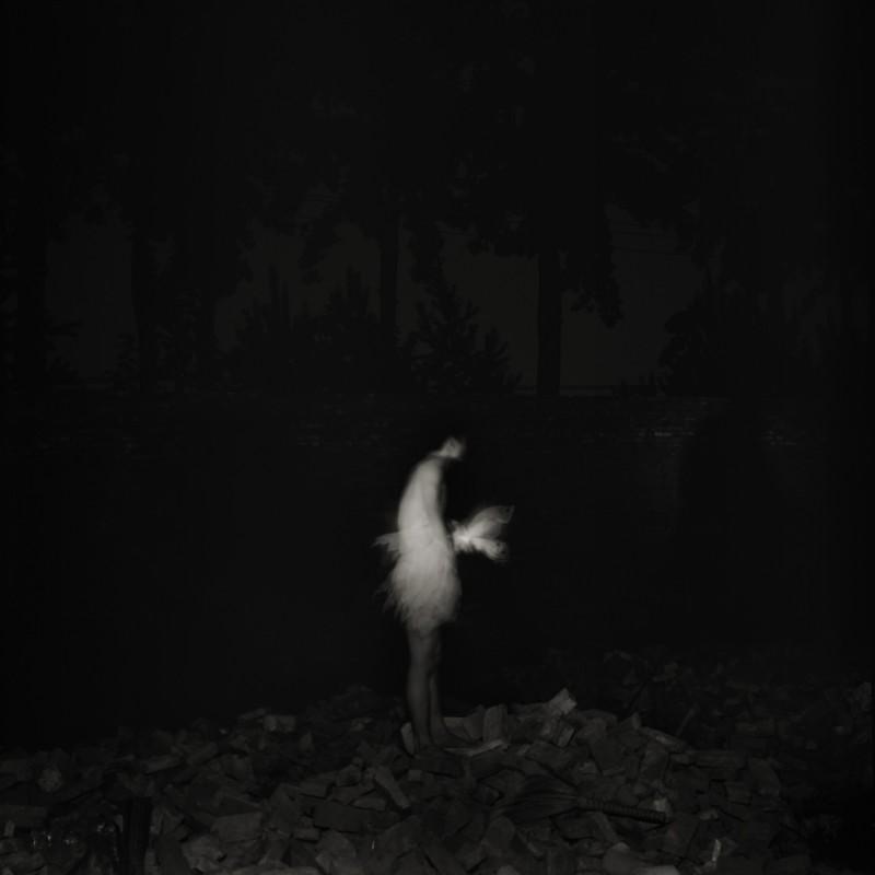 卢彦鹏 《关于一只鹅之二》 About a Goose no. 2 2007