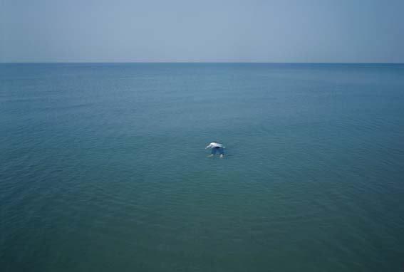 单飞鸣《海》 Shan Feiming The Sea 2008