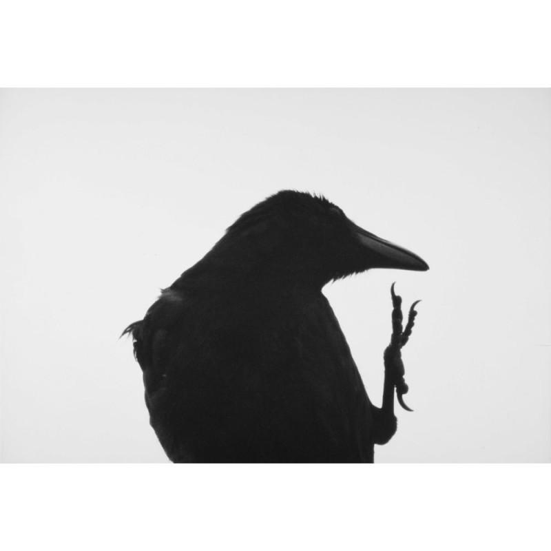 襟裳岬,Erimo Cape,1976,深濑昌久 Masahisa Fukase