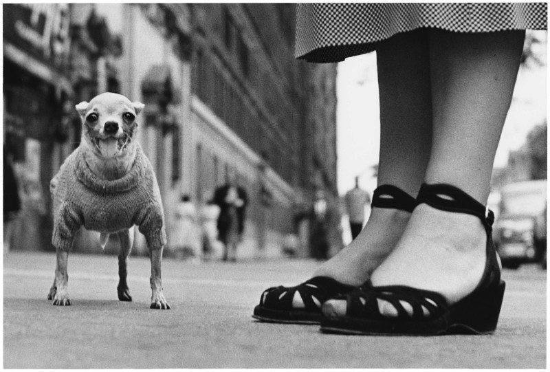 Elliott Erwitt, NEW YORK CITY, 1946