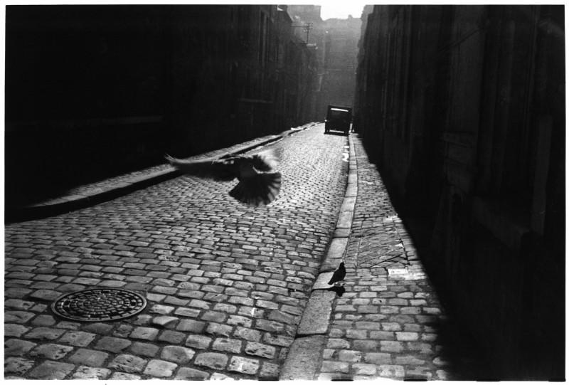 Elliott Erwitt, ORLEANS, FRANCE, 1952