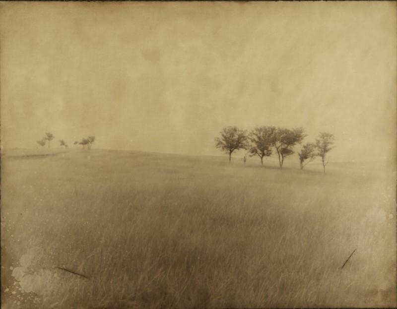 Jack Spencer, 14 TREES OF WOUNDED KNEE, PINE RIDGE, SOUTH DAKOTA, 2003