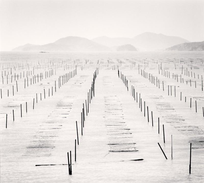 Michael Kenna, SEAWEED BEDS, JEUNG-DO, SHINAN, SOUTH KOREA, 2012
