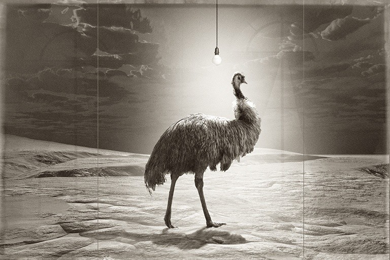 Jan Gulfoss, EMU