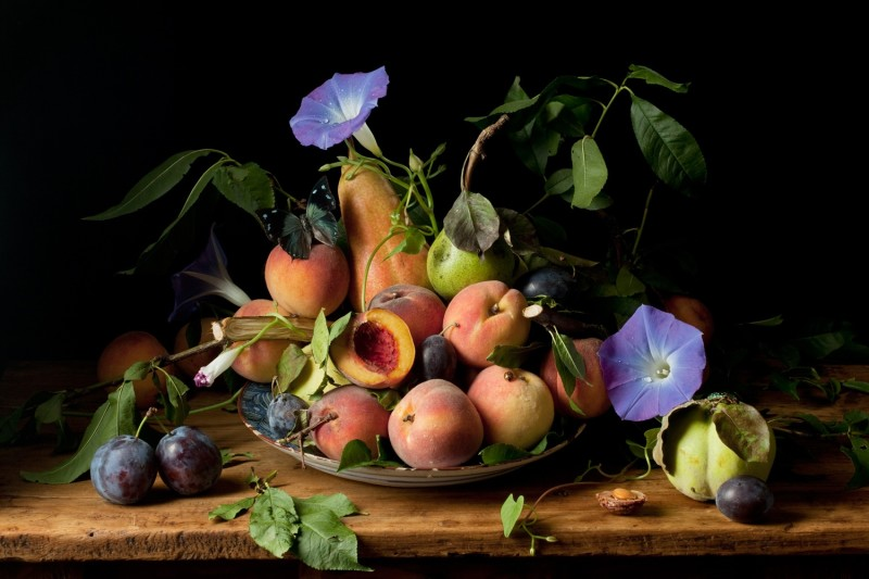 Paulette Tavormina, PEACHES AND MORNING GLORIES, AFTER GG, 2010