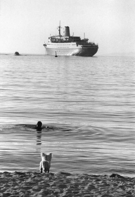 Elliott Erwitt, MIKONOS, GREECE, 1976