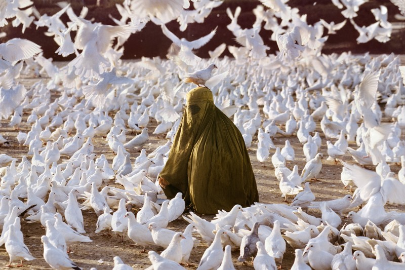 Steve McCurry, PIGEON FEEDING NEAR BLUE MOSQUE, 1991