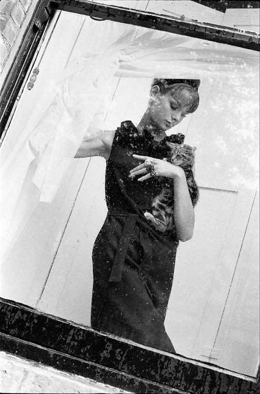 Brian Duffy, JEAN SHRIMPTON WITH KITTEN, VOGUE, 1962