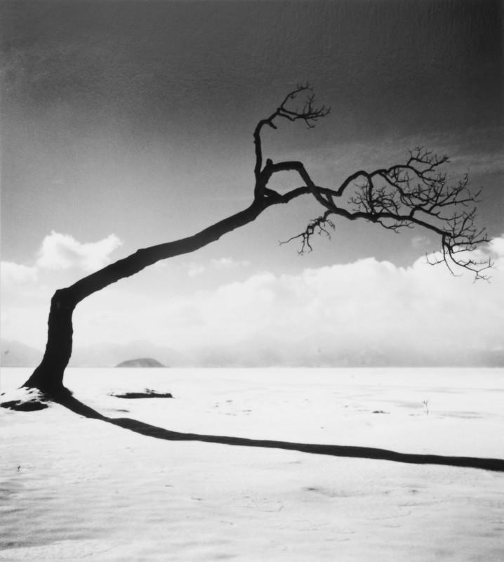 Michael Kenna, KUSSHARO LAKE TREE, STUDY 10, KOTAN, HOKKAIDO, JAPAN, 2005