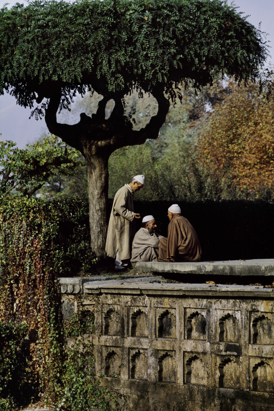 Steve McCurry, THREE FRIENDS IN SHALIMAR GARDENS, 1996