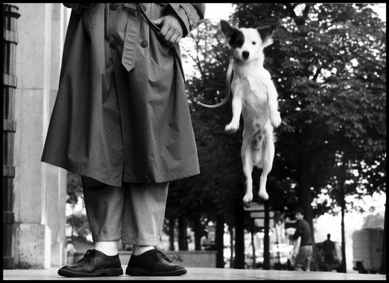 Elliott Erwitt, PARIS, FRANCE, 1989