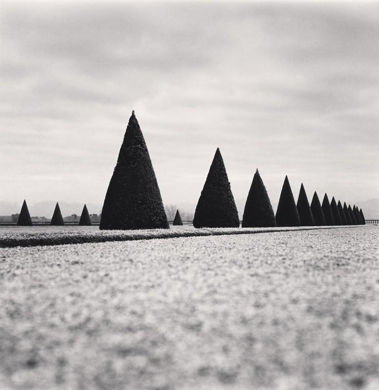 Michael Kenna, EIGHTEEN HEDGES, VERSAILLES, FRANCE, 1998