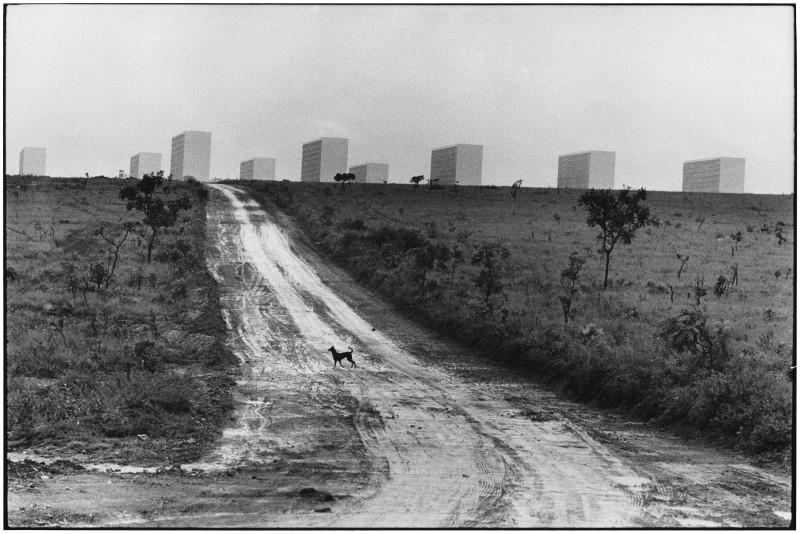 Elliott Erwitt, BRASIL, 1961
