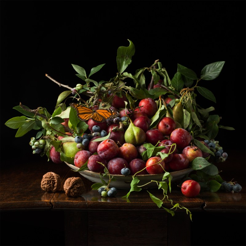 Paulette Tavormina, PLUMS WITH CHINESE WALNUTS, AFTER GG, 2013