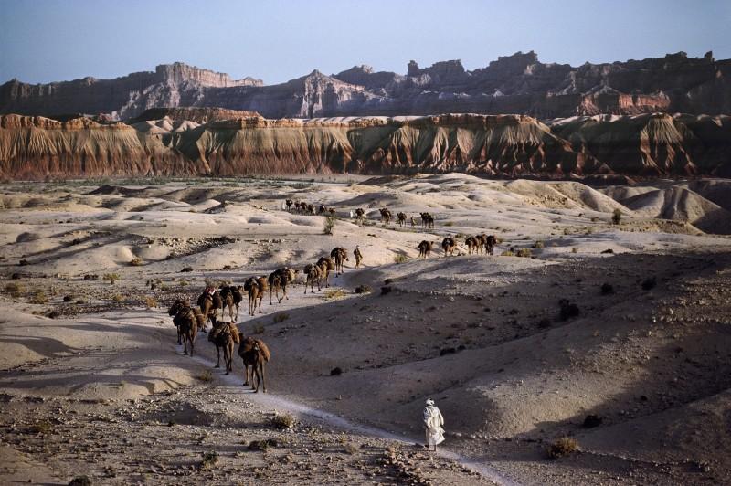 Steve McCurry, CAMEL CARAVAN, 1980