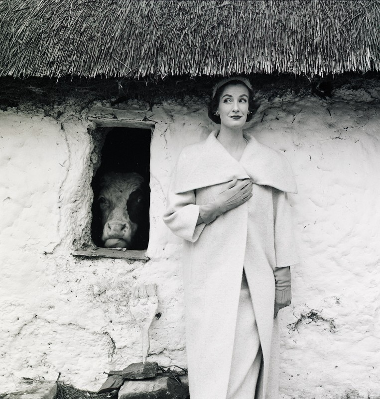 Norman Parkinson, WENDA AND THE COW, 1954