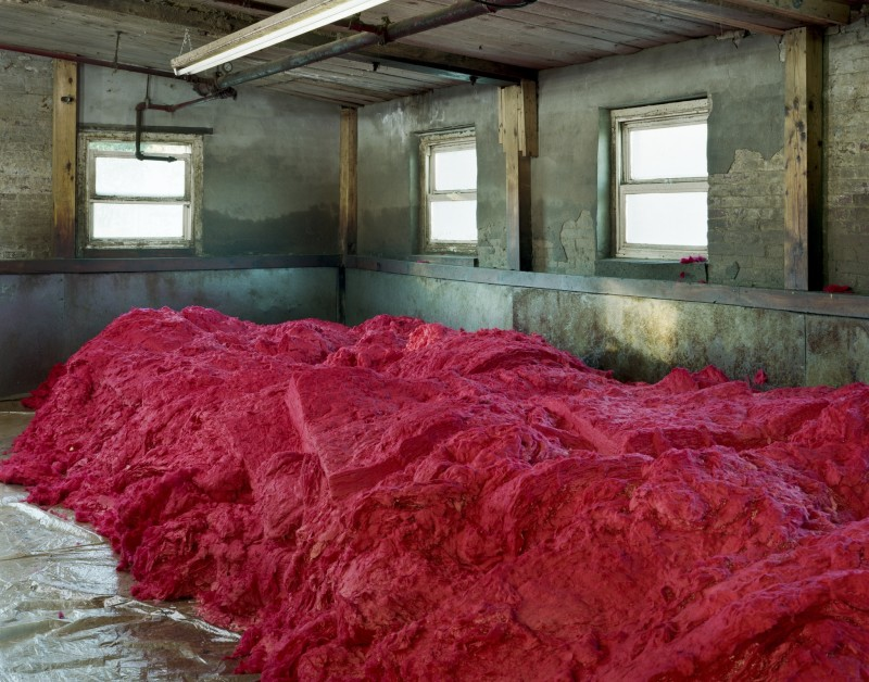 Christopher Payne, Dyed Treated Wool Before Carding, S&D Spinning Mill, Millbury, MA, From The Textile Series, 2012