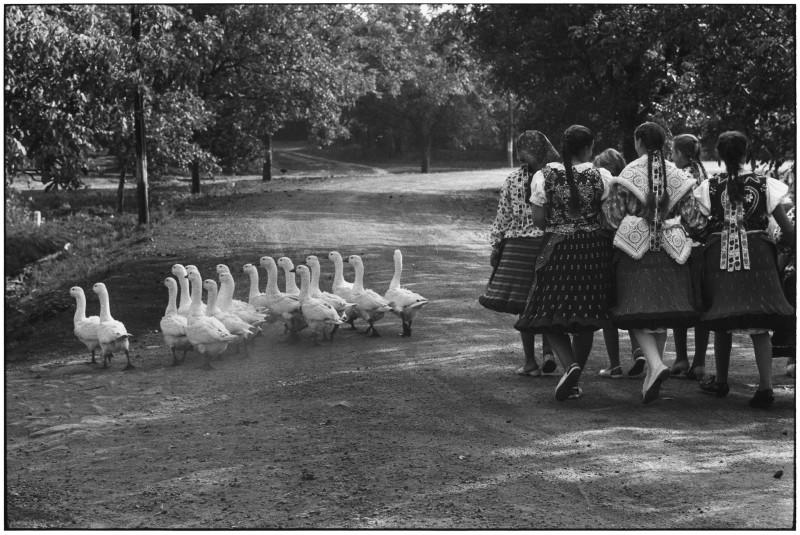Elliott Erwitt, HUNGARY, 1964