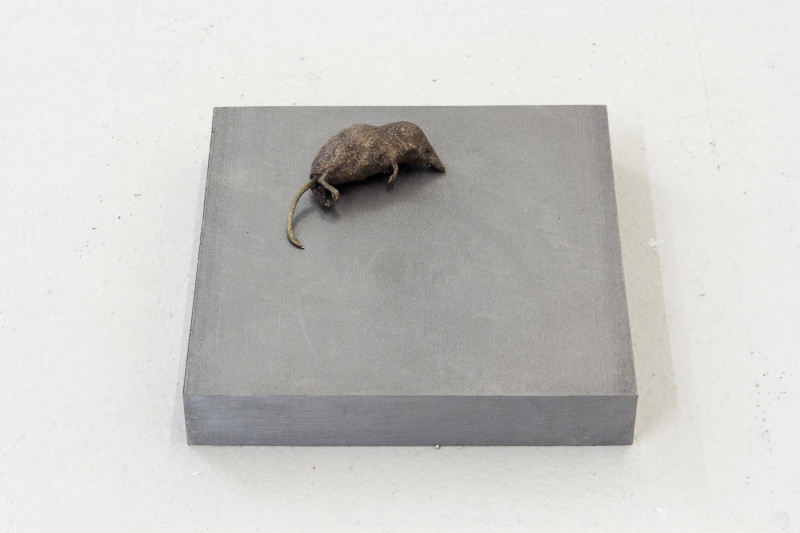 Jo Coupe, Slab (Shrew), 2017