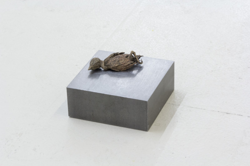 Jo Coupe, Slab (Blackbird), 2017