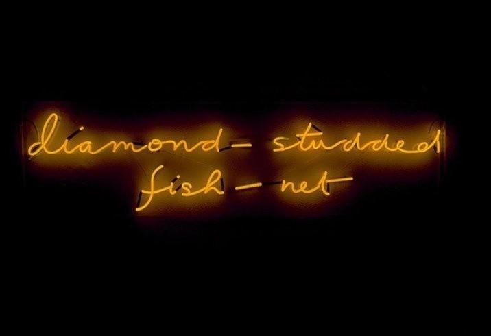 <p>Diamond Studded Fishnet, 1990<br /><em>Neon with Julie Farthing, 40.5 x 152 x 6 cm 15. 9 x 59.8 x 6.3 in</em></p>