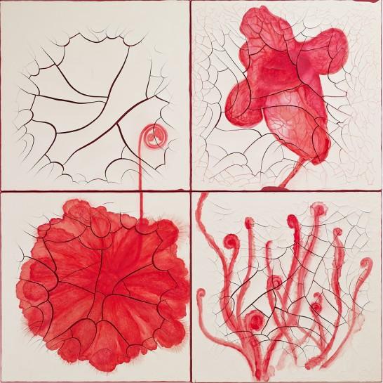 <p>Drosera aliciae, filiformis e Sarracenia purpurea, 2012<br /><em>oil and plaster on canvas, four panels99 x 99 cm each,39 x 39 in each</em></p>