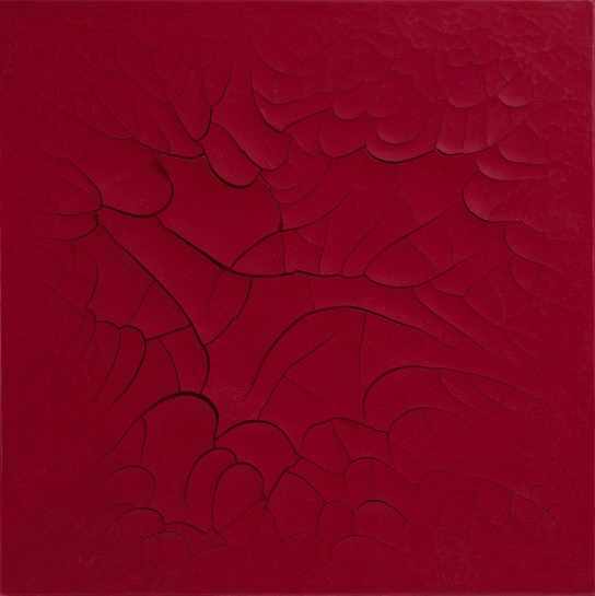 <p>Vermelho Carnívoro [Carnivorous Red], 2014<br /><em>oil and plaster on canvas,99 x 99 cm39 x 39 in</em></p>