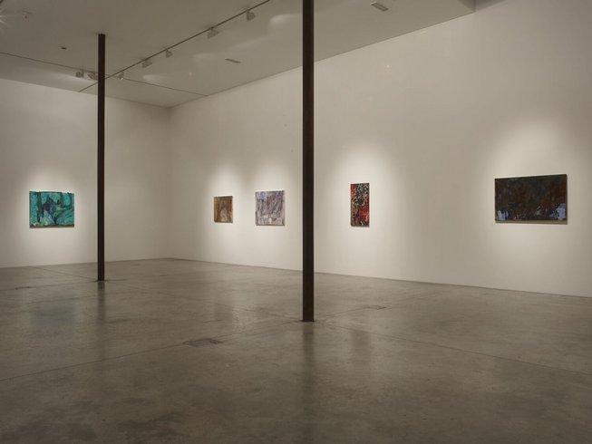 <p>Installation View, Varda Caivano,<i>Voice</i>,Gallery I, Victoria Miro, 16 Wharf Road, London, N1 7RW, 2011</p>