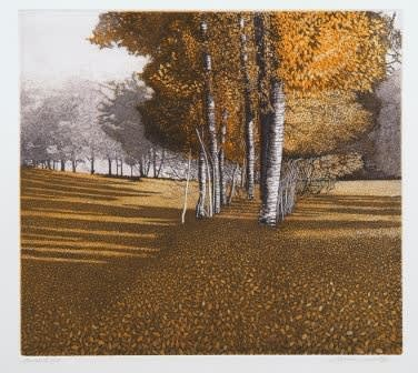 Phil Greenwood RE Amber Light etching & aquatint 56 x 57cm 64/150