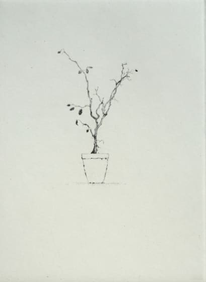 Lars Nyberg RE Marion´s Convalescent drypoint 30 x 40cm 17/50
