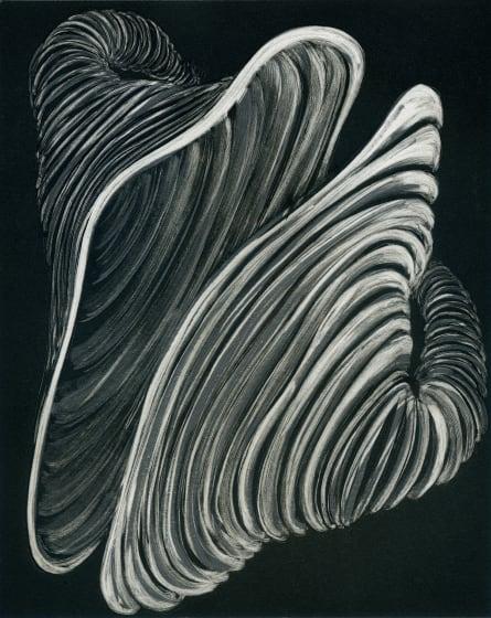 Ruth Uglow RE Echo 1 monoprint 42 x 53cm 1/1