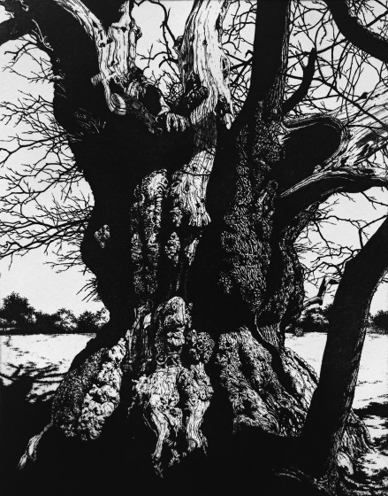 Blaze Cyan ARE Croft Castle V etching 48 x 38cm 2/45